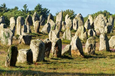 megaliths: Carnac monoliths alignment under morning sunlight  in Brittany, france