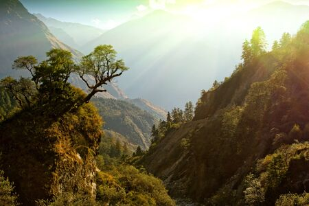enchanted Nepal landscape photo