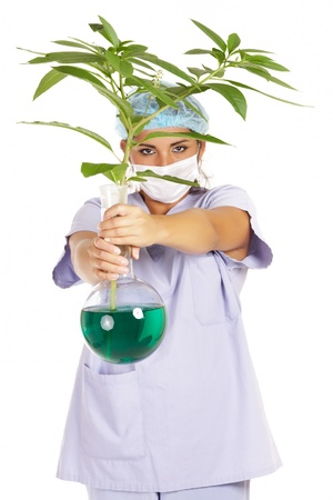 genetic research: female scientist working on plant genetic research