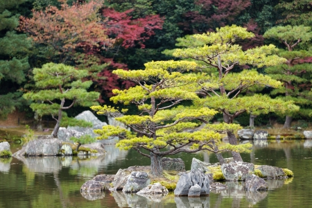 japanese zen garden in kinkakuji temple park, Kyoto