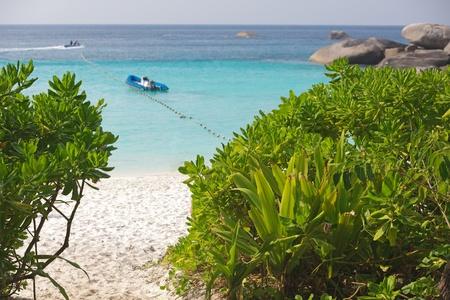 koś: ko similan tropical white sandy beach, Thailand