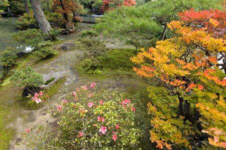 tradicional jardín japonés zen en la temporada de otoño, Kyoto, Japón Foto de archivo - 14088696