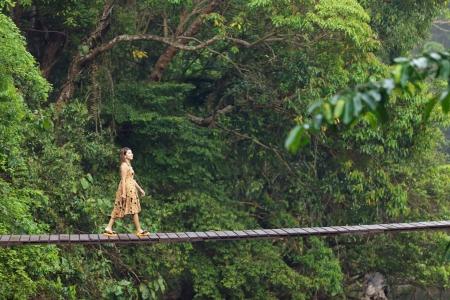 若い女性のジャングルで、タイの中断された木製の橋の上を歩いて