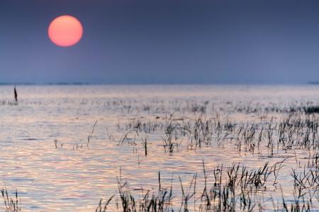 rising of sun: Amanecer en el lago tropical, Tailandia, profundidad de campo Foto de archivo