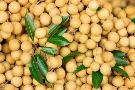 longan: Fresh Longan fruits in market, thailand
