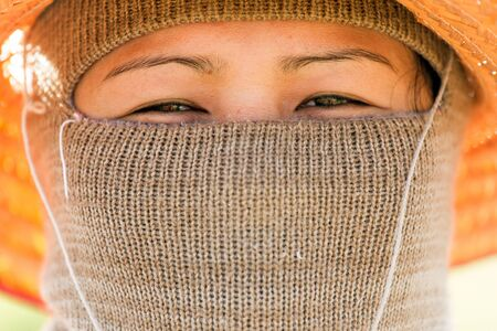 KHON KAEN, THAILAND - NOV 23:  a woman Thai farmer is protecting herself from the heavy sun for harvesting the rice in the field on November 23, 2013 in Khon Kaen, Issan, Thailand