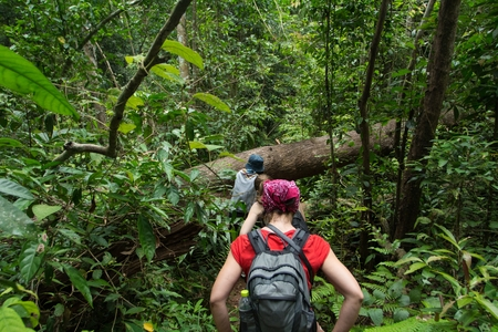 adventurers: Tourists hiking in the deep jungle of the Khao Yai national park in Thailand deep jungle Editorial