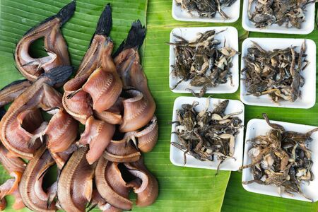 repulsive: Cooked frogs and fresh kipper in a tropical asian market in Thailand