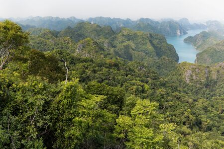 cat island: Halong bay archipelago top view from Cat Ba island, Vietnam
