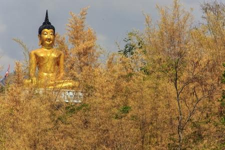 thai buddha: Golden Buddha in golden and dry bamboo forest, Wat Tham Khiritham temple, Thailand