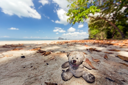 beached: Teddy bear beached on tropical wild beach in the Trang province in Thailand.