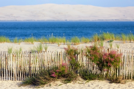 Bassin dArcachon and Dune du Pyla, view from the Cap-Ferret point, Bordeaux, Gironde, France
