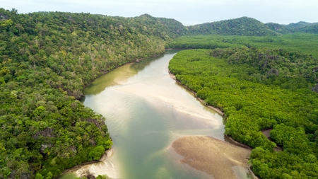 Aerial view of river and rainforest at Ao Phante Malacca beach, Koh Tarutao island, Thailand