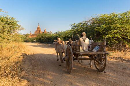 cart: Horse cart running in a path leading to pagoda, Bagan, Myanmar