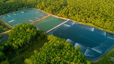 Garnalenboerderijen luchtfoto in de Phang Nga Bay, Thailand