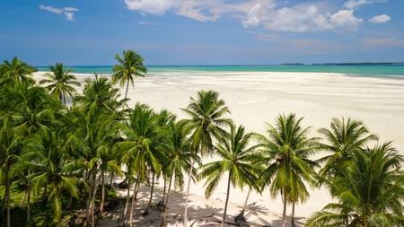 Aerial shot of the deserted and large tropical Ohoidertawun beach, Kei Kecil island, Maluku, Indonesia
