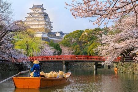 Group of tourists boating on the river near the Himeji castle at full cherry tree blossom, Unesco world heritage, Japan