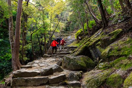 Persone trekking nel percorso di pellegrinaggio Kumano Kodo che conduce al santuario scintoista di Kamikura, Shingu, Japan Archivio Fotografico
