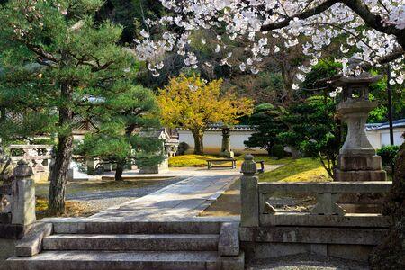Fresh Japanese temple garden at spring in Kyoto Zdjęcie Seryjne
