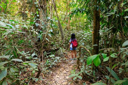 Woman trekking in the Khao Sok national park, Thailand Stock Photo