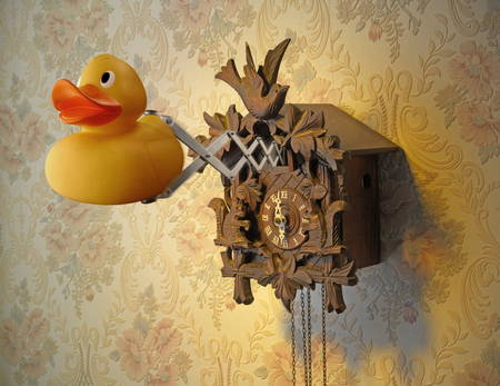 Cuckoo Clock and Rubber Duck coming out against flowery wallpaper