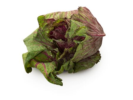 Organic Red Sweetheart Lettuce isolated on white background