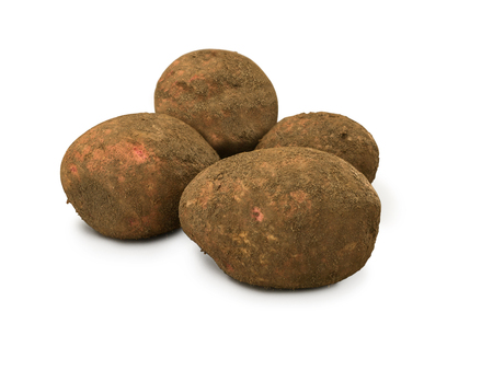 russet potato: Organic Potatoes Dirty Red Cara isolated on white