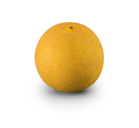 Organic Galia Melon isolated on white