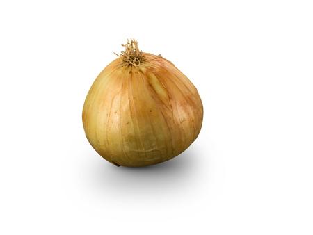 Organic Grano de Oro Onion isolated on white background