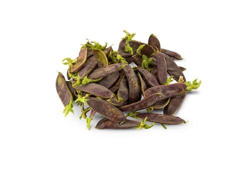 Organic Purple Mangetout isolated on white