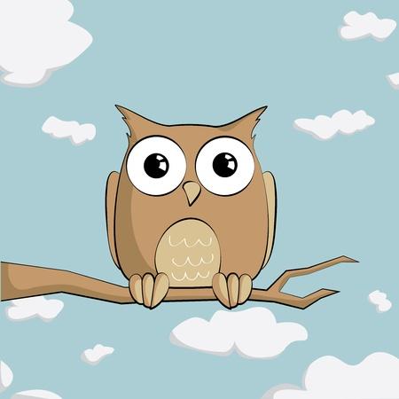 isolated owl: Cute B�ho