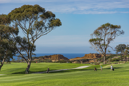 Campo golfe, em, torrey, pinhos, com, oceano pacífico, em, a, fundo, la jolla, califórnia, estados unidos, perto, san diego