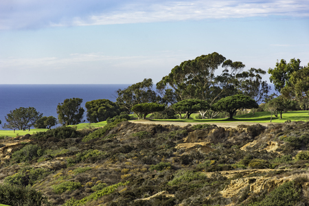 Golf Course at Torrey Pines with cliffs and Pacific Ocean in the background La Jolla California USA near San Diego