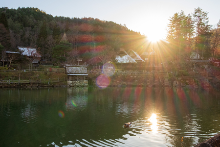 Sun light that comes through the mountain impact onto the water surface with a duck that is playing in the pool