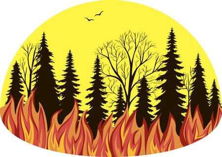 Vector illustration. Fire in the forest.
