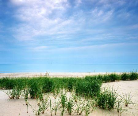 Beach and blue sky