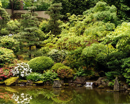 Japanese garden fantasy