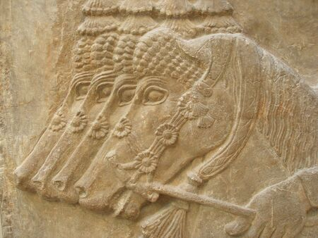 HORSES - Ancient Assyrian Sculpture - close up  Stock Photo