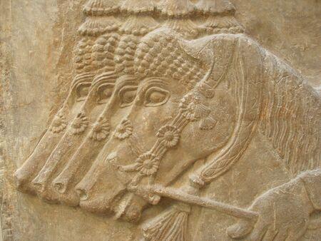 HORSES - Ancient Assyrian Sculpture - close up  Stock Photo