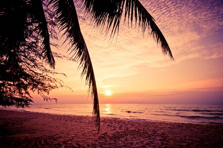 Beach in Cha-am, Thailand. Shooted in the morning with amazing sunrise sky with palm leaf in foreground Stock Photo - 14693933