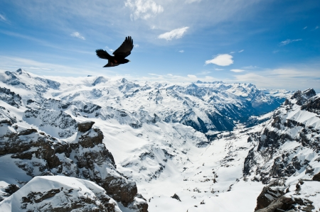 Urner Alps, view from top of Titlis mountain, Obwalden, Switzerland photo