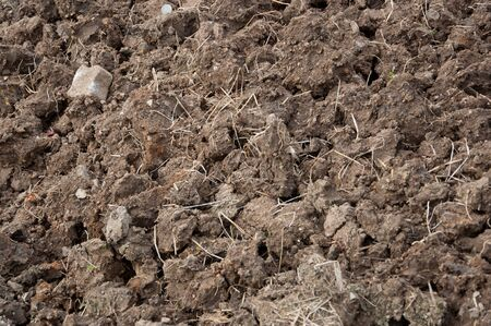 Agriculture soil waiting for farming photo