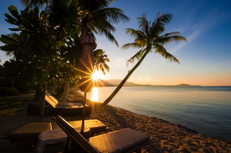 lounges: Sunset at the beach with lounges and coconut trees foreground Stock Photo