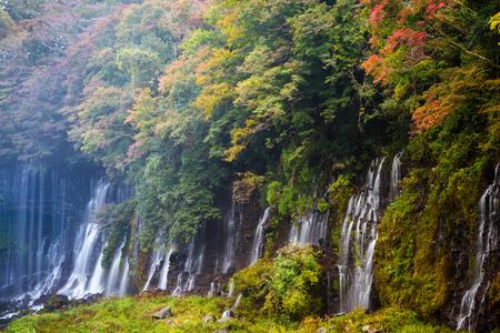 Autumn scene of Shiraito waterfall in the southwestern foothills of Mount Fuji, Shizuoka, Japan 版權商用圖片