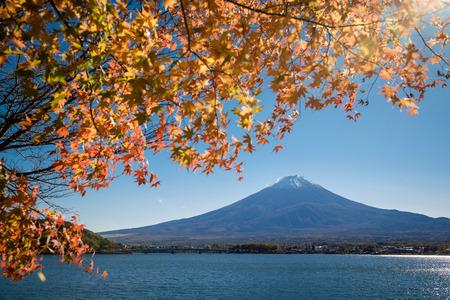 Mount Fuji and lake Kawaguchi (Kawaguchiko) with orange maple leaves Yamanashi, Japan. 版權商用圖片