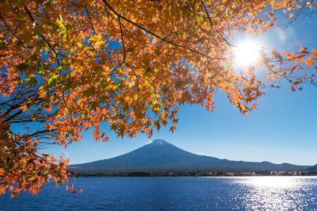 Mount Fuji and lake Kawaguchi (Kawaguchiko) with orange maple leaves Yamanashi, Japan. 版權商用圖片 - 96414283