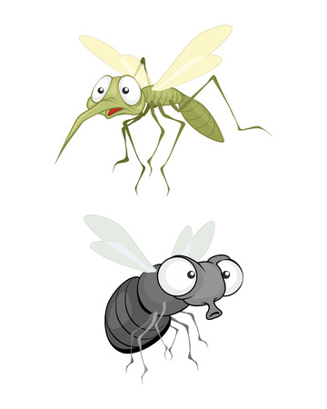 illustration of a insect, fly and mosquito Vector