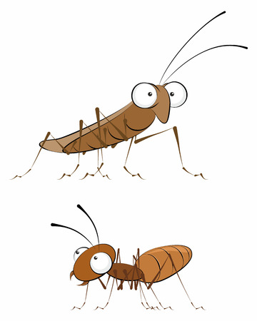 illustration of a insects - cockroach and ant
