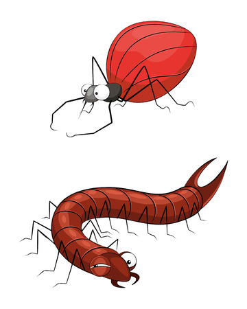 centipede: Vector illustration of a insects set on white Illustration