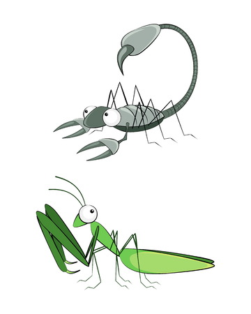 creeping: Vector illustration of a insect scorpion and mantis
